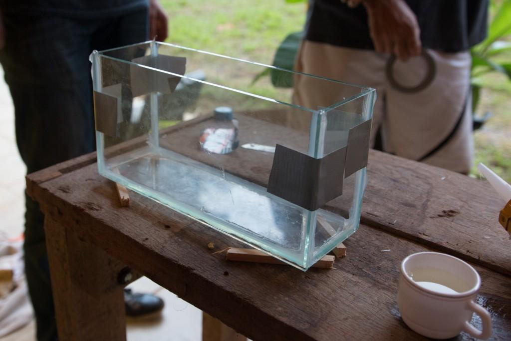 aquarium blog-18